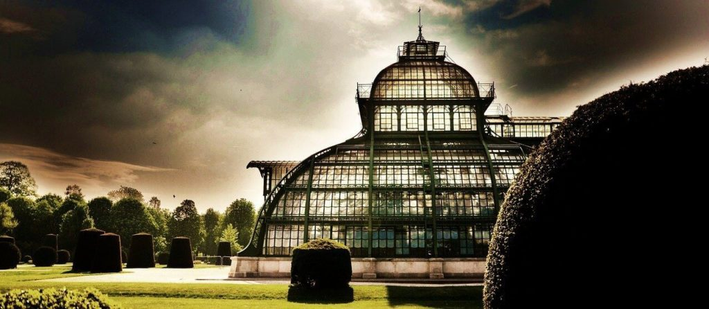 Beautiful palmhouse